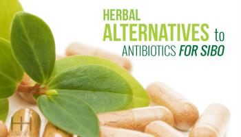 Treating sibo part 9 elemental diet herbal alternatives to antibiotics for sibo fandeluxe Gallery