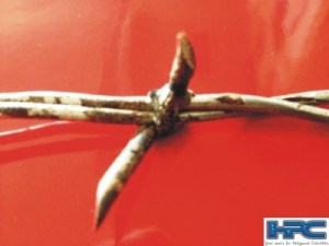 "JEEPERS CREEPERS 2: 6"" Piece Of Stunt Barb Wire"