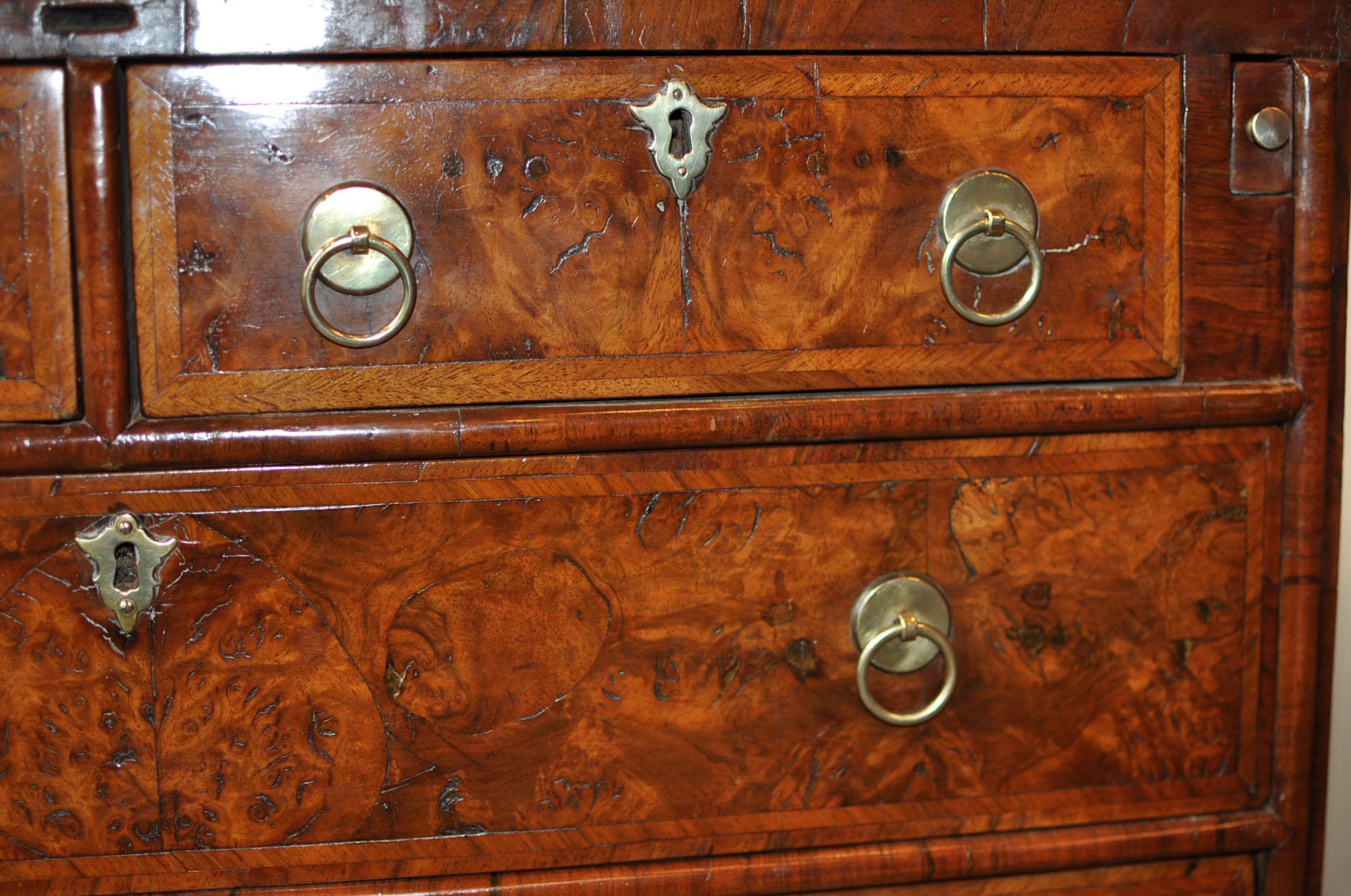 Walnut Bachelors Chest  Holmes Antiques