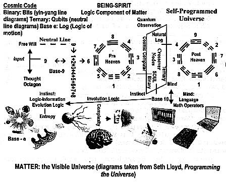 Evolution Engineering Diagram Evolution Crossword Wiring