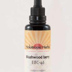 Blushwood berry EBC-46