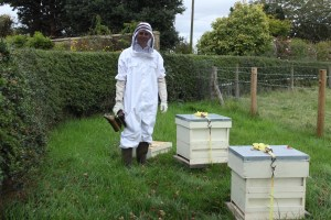Holt Hall Apiary