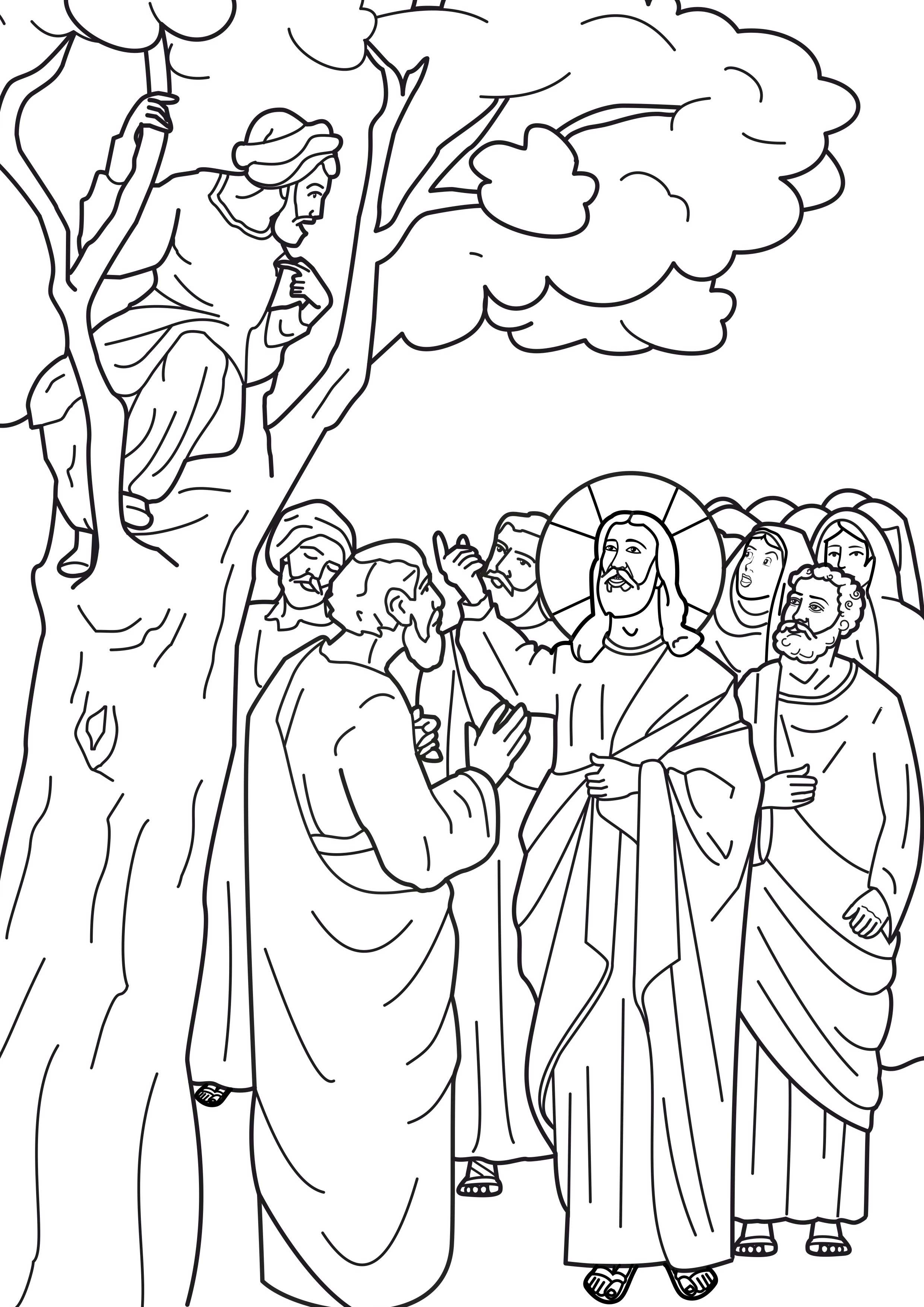 Free coloring pages of zacchaeus in a tree