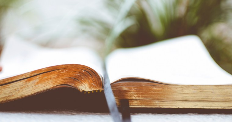 Best Bible Translation for Daily Reading
