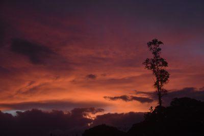 A sunrise.
