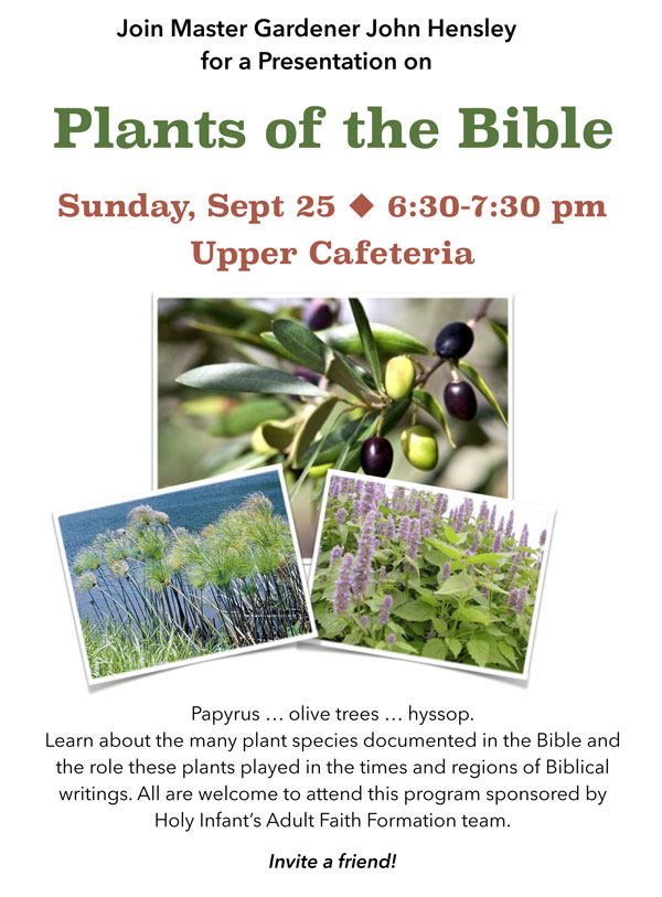 Plants-of-the-Bible