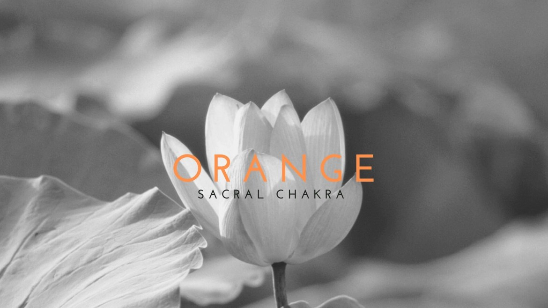Sacral Chakra 101