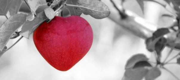 bomb of love, heart-shaped apple