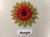 Poppy Weaving (4)