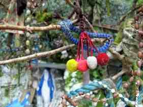 offerings Lough Hyne