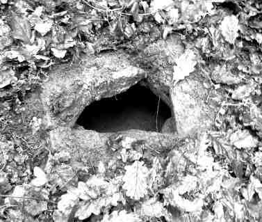 St Abbán's Well, Ballyvourney