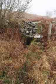 The well nestling into the wall