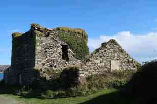 reamins of an O Driscoll tower house