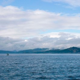 Beautiful-Victoria-Island