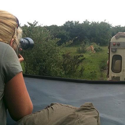 tanja-fotografeert-leeuw