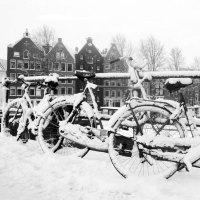 Zawrt-wit-winterse-fietsen