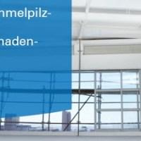 Schimmelpilz- und Bauschadenkonferenz 2019