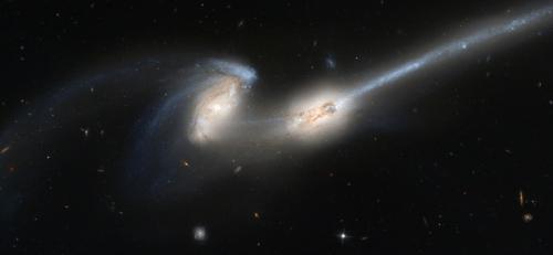 guerra galaxias A Burgos hombre de palo 08