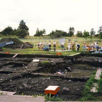 Excavación 1991