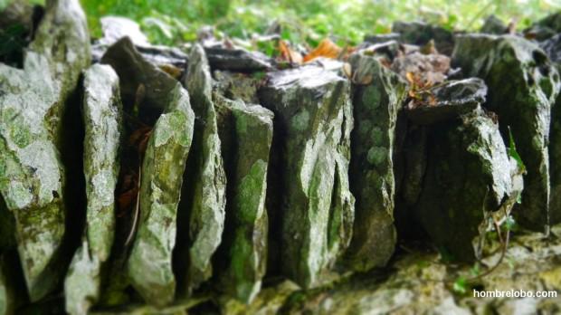 Parte del muro de Monasterboice