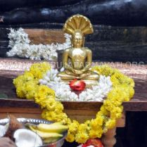 Hombuja-Jain-Math-Parshwanath-Janma-Kalyana-2017-0035