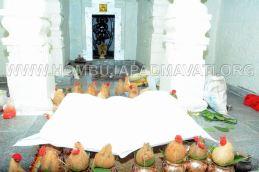 Sri-Kshetra-Hombuja-Kundadri-Jain-Temple-Dhamasamprokshane-0011