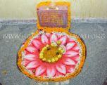 Sri-Kshetra-Hombuja-Kundadri-Jain-Temple-Dhamasamprokshane-0028