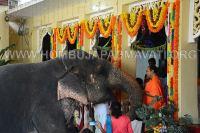 Hombuja-Jain-Math-Humcha-Navarathri-Dasara-Celebrations-Pooja-Day-10-Dashami-0001
