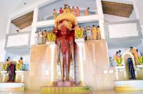 Humcha-Hombuja-Jain-Math-Rathotsava-Day-05-Guddada-Basadi-Parshwanath-Tirthankar-Abhisheka-0014