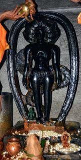 Kundadri-Jain-Temple-Makara-Sankranti-Jathre-2019-0005