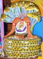 Hombuja-Humcha-Jain-Math-2019-Rathotsava-Nagavahanotsava-0004