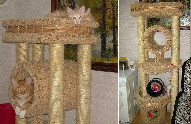 компактная лазанка для кота в квартире