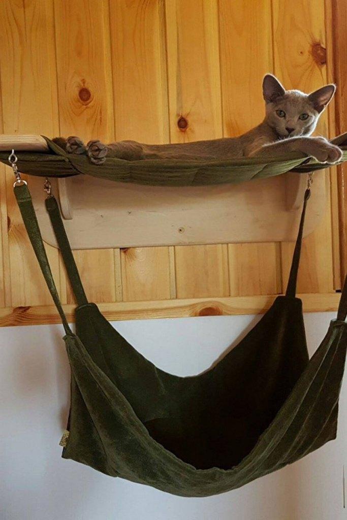 подвесной гамак для кота