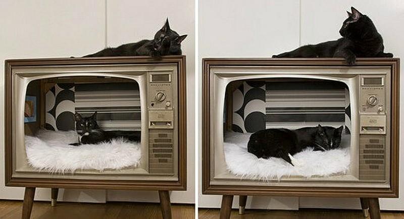 домик кота со старого телевизора