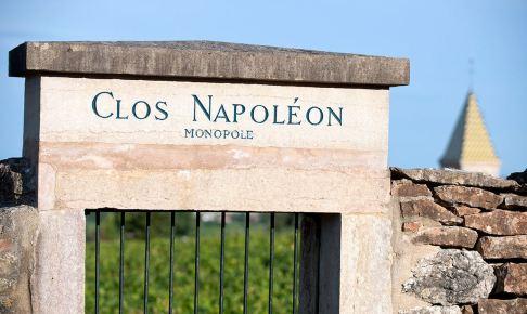 clos-napoleon-クロナポレオン