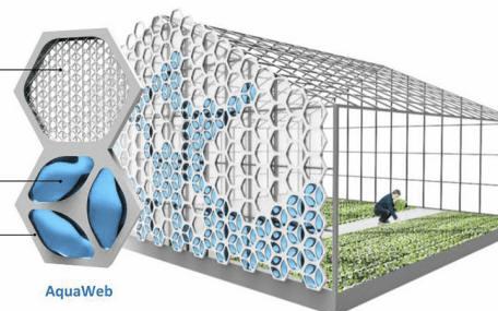 AquaWeb - Un Nuevo Sistema para Captar y Gestionar el Agua inspirado en Abejas, Arañas, Hongos y Plantas