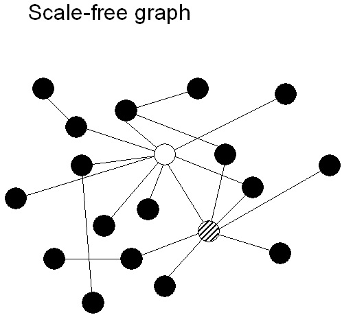 Connected Brains: Introduction to graph theory