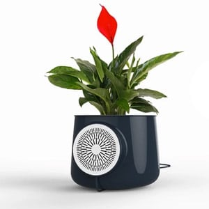 Photo of Clairy Air Purifier