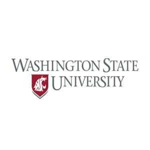 Graphic of WSU Logo