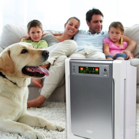 2018 best air purifier for pets (cat allergies, dander, dog hair ...