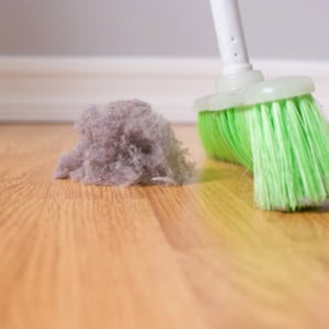 Photo of Dust and Broom