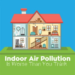 Indoor Air Pollution Infographic Banner