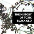 Photo of Black Mold Spores