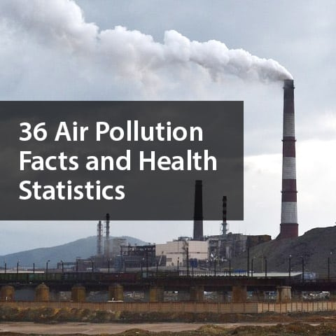 Graphic of Air Pollution with Statistics