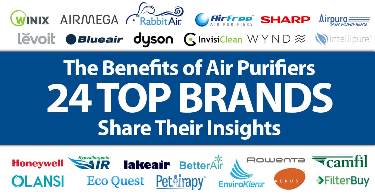 The Benefits of Air Purifiers - 24 Top Brands Share Their Insights