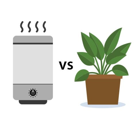 Graphic of air purifier vs houseplant