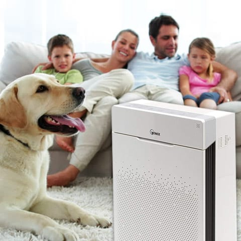 Best air purifier for pets in living room