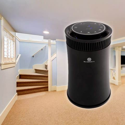 Best Air Purifier for Basements