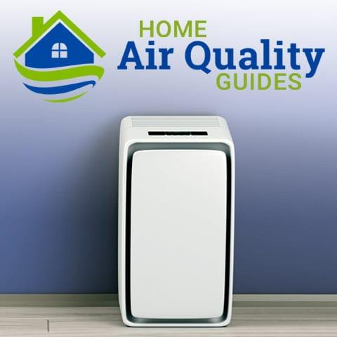 More Air Purifier Reviews