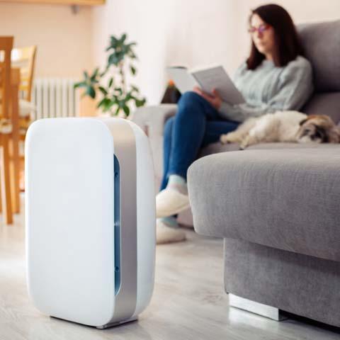 What does a air purifier do